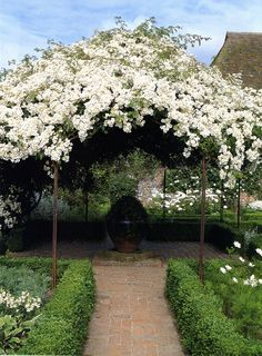would recreate this round-ish pergola for a ceremony in italy overflowing with white floral..love