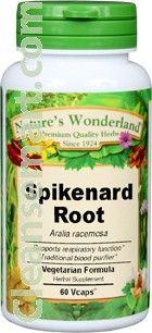 rare spikenard seeds   spikenard cologne for men   spikenard leaves
