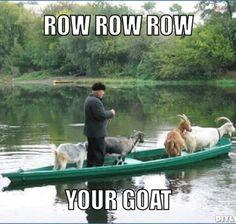 Totes his goats