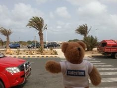 Tori Bear from Safestore Charlton visited Cape Verde off the west coast of Africa, famous for its active volcano Mt. Fogo and five different species of nesting sea turtles.