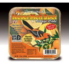 Pine Tree Farms 3012 Orange Never Melt Suet Dough, 12 Ounce Suet Cake Recipe, Suet Cakes, Best Bird Feeders, Wild Bird Food, Sports Nutrition, Pine Tree, Pet Supplies, Lunch Box, Orange