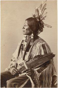 Hatona (Many Horns),(Blackfoot Sioux) 1872