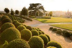 Parc du château royal d'Amboise en Touraine Loire Valley France