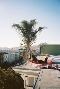 one of our first days in l.a., living off a roof midday and borrowing a bedroom right below in night