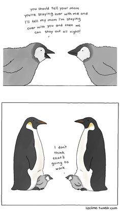 how to stay out all night - http://lizclimo.tumblr.com/
