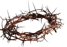 All love is not equal.  No love will ever compare to His. {Crown of thorns similar to that worn by our Savior}