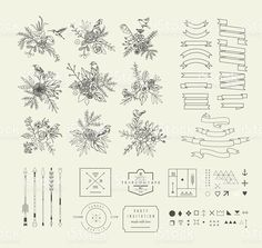 Hand Drawn vintage floral elements. Flowers,birds and decorative elements. royalty-free stock vector art