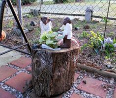 Debi M (Washington, NC)  hollow log planter  I began this project by spraying the dried log with termite spray. I then used a planter bag and placed it inside the log, filled it with potting soil then trimmed the bag level with the log. I then transplanted my plant. This makes a nice addition to my courtyard.