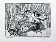 Toad etching