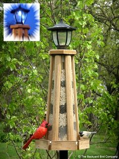 Looker Solar-Powered Lighthouse Birdfeeder