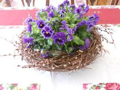 pansies in a nest.  a collection of pansies surrounded by a grapevine wreath.  perfect for spring / Easter / Mother's Day party table