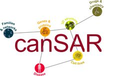 canSAR is a free, public #cancer focused knowledgebase. It brings together biological, chemical, pharmacological and disease data, distills them and makes them accessible to cancer research scientists from all disciplines to support translational research and drug discovery.Learn more...