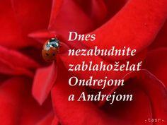 Všetko najlepšie, dnešní meninoví oslávenci ONDREJOVIA a ANDREJOVIA!