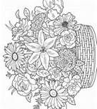 Free Coloring Pages For Adults - Bing Images