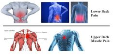 BEST TIPS FOR HEALTHY AND DISEASES: Lower Back Pain Solutions and Upper Back Muscle Pa...