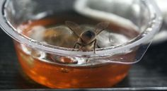 #Honey from A to Z: 26 interesting things you might no know about honey | http://finedininglovers.com/stories/honey-facts/