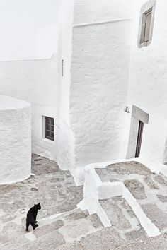 Backstreets of Chora, on Patmos, Greek Islands | Credit: Alistair Taylor-Young