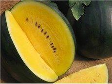 Janosik Watermelon