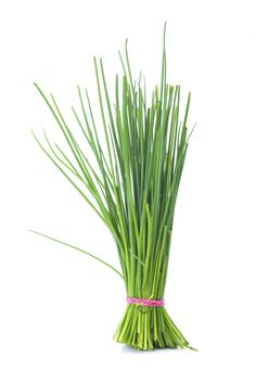 Chives are poisonous to dogs and cats. If your dog or cat has gotten into chives, onions, garlic or leeks, contact your vet or Pet Poison Helpline Toxic Plants For Cats, Cat Plants, Herb Garden In Kitchen, Kitchen Herbs, Low Fodmap Vegetables, Flea Shampoo For Cats, Chives Plant, Japanese Beetles, In Natura