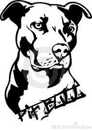Resultado de imagen de dibujos de pitbull