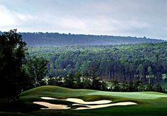 Renaissance Birmingham Ross Bridge Golf Resort & Spa Rating: 4.0 Stars  4000 Grand Ave , Hoover, AL 35226 United States of America 1-866-599-6674
