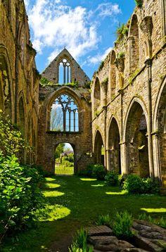 Abbaye de Beauport, Paimpol / Francia (por Lilly Bzh). Ruins abandoned