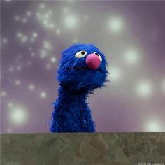 Grover is the best!
