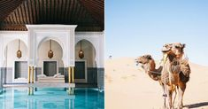Our roundup of the most awe-inspiring Morocco travel destinations will help you plan the trip of a lifetime. Find out all the hidden gems here Budget Travel, Travel Tips, Morocco Travel, Travel Articles, Travel And Leisure, Places Ive Been, Life Is Good, Travel Destinations, To Go