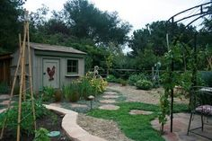 landscaping around chook house - Google Search