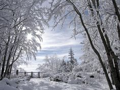beautiful snowy scenes | Beautiful Snow Scene2_n