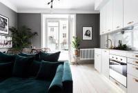 1-room-with-sofa-velvet-integrated-kitchen