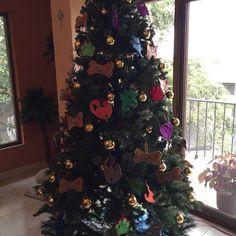 "mara13claudialp: ""Mi Navidad dedicada a mis compañeros de vida! #cat #cats #catoftheday #catsofinstagram #dog #dogs #dogsofinstagram #dogoftheday"""