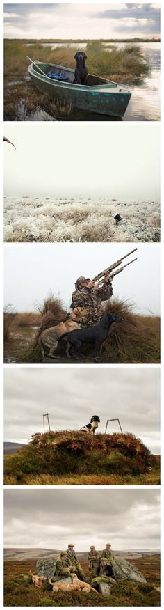 Spend enough time with good hunting dogs, and you'll see that they're not just gifted with speed and heightened senses. They get cagey. They learn tricks and employ them. They learn to work smart and hard.