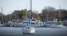 Westchester Parks: Harbor Island Park in Mamaroneck - Wee Westchester Fun Places For Kids, Harbor Island, Island Park, Westchester County, Meet Friends, How To Get Warm, Hudson Valley, Playground, Boat