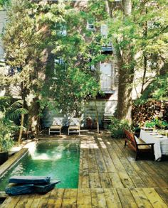 Green pool in a Montreal courtyard. Angus Mcritchie