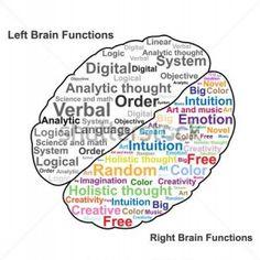 wiki lateralization brain function