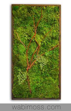 Moss wall art, made with real preserved moss and ferns then decorated with wispy manzanita branches. These green wall decorations require zero care - no watering, no replacing, no stress! Invite nature into your home with a care-free green wall plant painting.