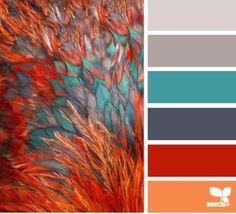 The teal is striking and refreshing against the orange and reds. Consider using teal as an accent in a tropical garden that's full of dark green foliage and orange flowers.