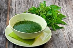 """A springtime nettle soup, full of so much flavor and health, it has changed our lives."" Booyah, allergy season, see ya later! Can't wait to get some Nettle Soup (Brennessel) Nettle Benefits, Natural Allergy Relief, Medicinal Herbs, Herbal Medicine, Diabetes, Natural Health, Natural Remedies, Herbalism, Medicinal Plants"