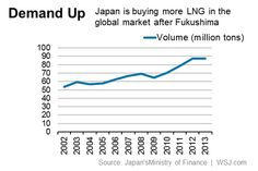 Shakeout May Be Ahead for LNG Plants, Say Japan Experts