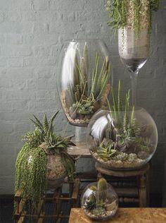 Floreros decorativos   Dco   Blog Saga Falabella