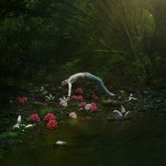 Where the flowers are by Matthijs Smilde