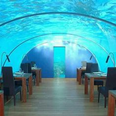 Restaurante Ithaa Undersea, no Hilton Maldives Resort and Spa, na Ilha Rangali, India. Projeto de New Zealand design consultancy firm, MJ Murphy Ltd. #restaurant #restaurante #sentidos #sense #artes #arts #art #arte #decor #decoração #architecturelover #architecture #arquitetura #design #interior #interiores #projetocompartilhar #davidguerra #shareproject #ithaa #undersea #sea #hiltonmaldives #rangali #island  #ilha #india  #asia #newzealanddesign #mjmurphy