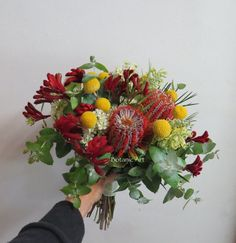 Hand tied bouquet, posy, bridesmaid, australian natives, red kangaroo paw banksia coccinea, wax flower,  grevillea, blue gum and billy buttons. Bright and bold, natural