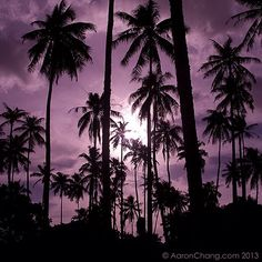 Tahitian Moon Rise      |        Aaron Chang      |       Fine Art Photography