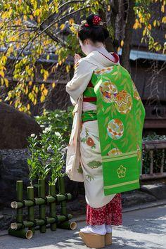 Darari obi of okiya Arai (Gion Kobu)