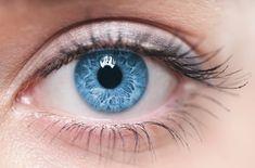 TOP zaujímavosti o očiach: Tieto fakty vás prekvapia! Pretty Eyes, Cool Eyes, Beautiful Eyes, People With Green Eyes, Diagnosing Fibromyalgia, Dry Eye Symptoms, Eye Facts, Nerve Fiber, Brown Eyes