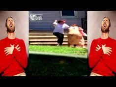 4 Redneck White Trash Girls Fight Each Other Over Guy - YouTube