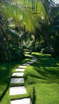 Découvrez la marque Cap vert, dédiée au jardin et à l'arrosage, au rapport qualité/prix imbattable