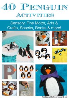 40 penguin activities for kids including sensory, fine motor, arts and crafts, snacks, books and mor Animal Activities, Animal Crafts, Winter Activities, Preschool Activities, Preschool Winter, Geography Activities, Preschool Class, Reading Activities, Penguins And Polar Bears
